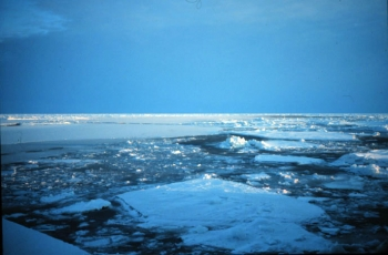 NOAA Issues Annual Report Card Outlining Changing Conditions in the Arctic