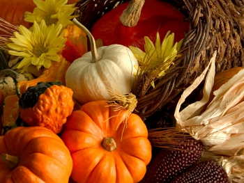 Image of colorful Fall fruits and vegetables (Photo: Westmont.IL.gov)