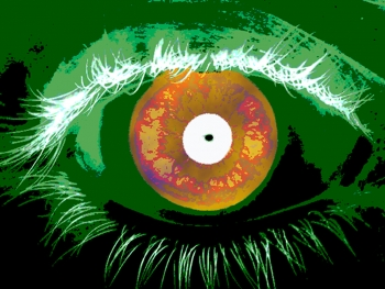 Image of human eye/iris (Photo: Talbott/NIST)