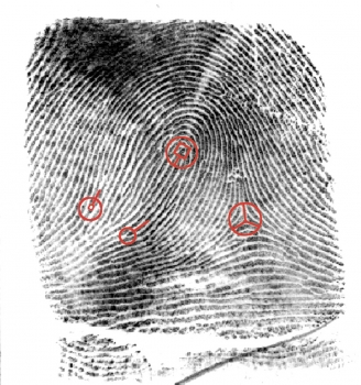 image of thumb print