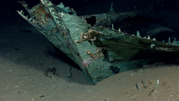 While most of the ship's wood has long since disintegrated, copper that sheathed the hull beneath the waterline as a protection against marine-boring organisms remains, leaving a copper shell retaining the form of the ship.