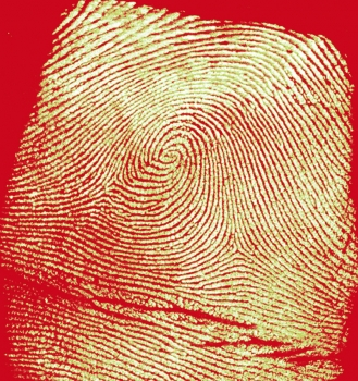 Image of fingerprint