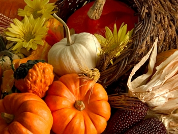 Image of Fall fruits and vegetables