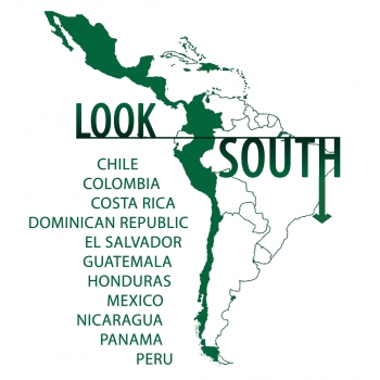 Look South logo
