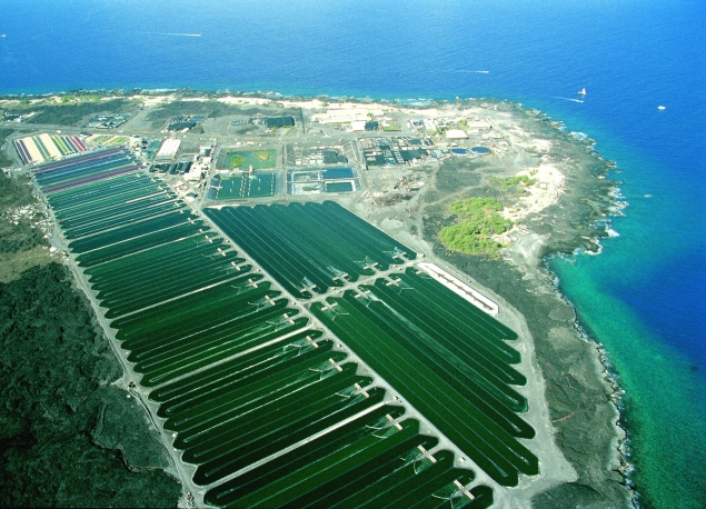 Aerial Photo of Cyantoch Algae Farms at Keahole Point
