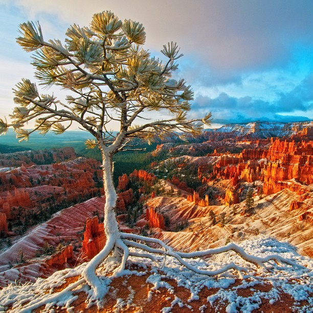 bryce canyon national park latin dating site Dating offers shop garden shop  fly over rainbow bridge national monument ride in bryce canyon with a cowboy  yellowstone national park,.