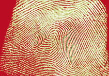 Image of fingerprint. Click for larger image.