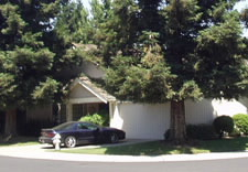 Image of house and garage shaded by trees. Click for larger image.