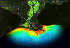 Image of mouth of Mississippi River showing nutrient run-off. Click for animated vizualization.